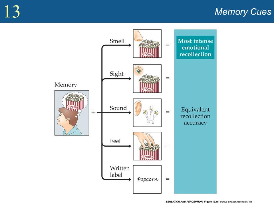13 Memory Cues