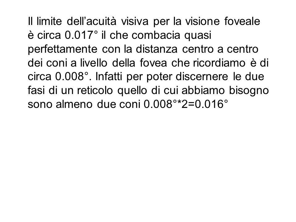 Il limite dellacuità visiva per la visione foveale è circa 0.017° il che combacia quasi perfettamente con la distanza centro a centro dei coni a livello della fovea che ricordiamo è di circa 0.008°.
