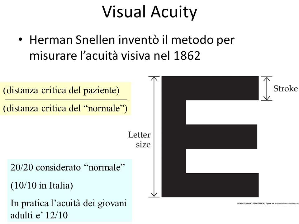 Visual Acuity Herman Snellen inventò il metodo per misurare lacuità visiva nel 1862 (distanza critica del paziente) (distanza critica del normale) 20/20 considerato normale (10/10 in Italia) In pratica lacuità dei giovani adulti e 12/10