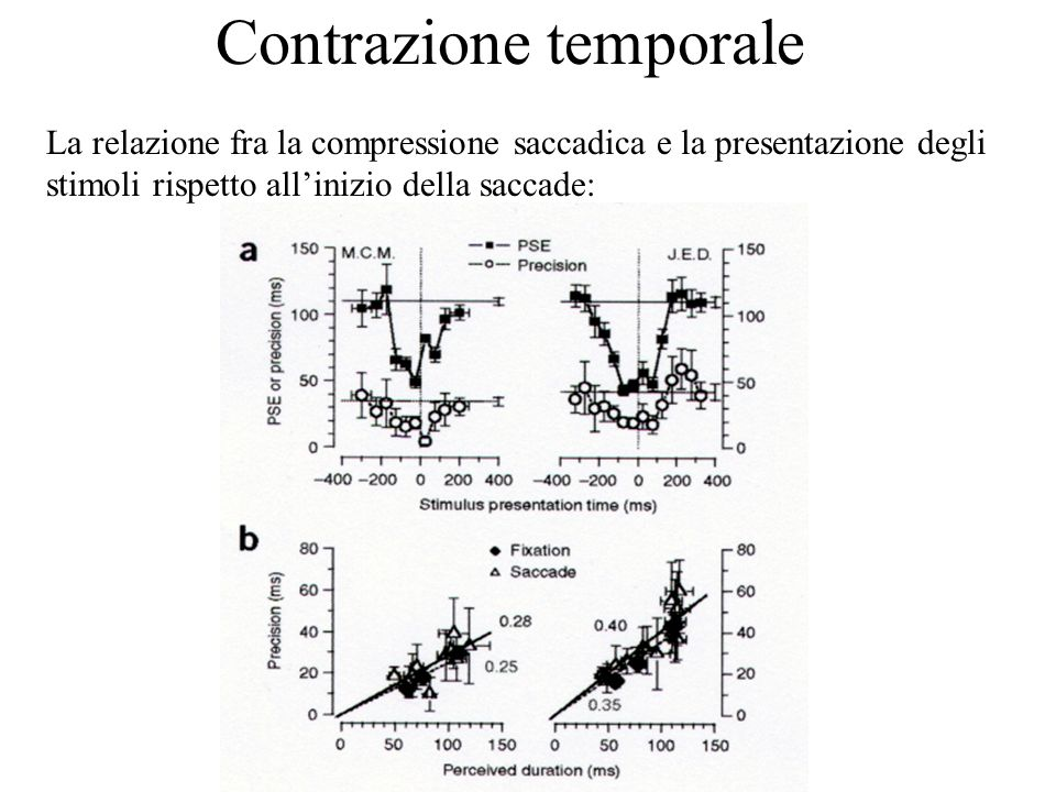 Percezione Temporale 2006 Contrazione temporale Esperimento 2: In questo esperimento i soggetti erano chiamati a giudicare lordine di presentazione di due barre orizzontali (poi nella seconda metà delle sezioni gli veniva anche chiesto di stimare la separazione fra le presentazioni)