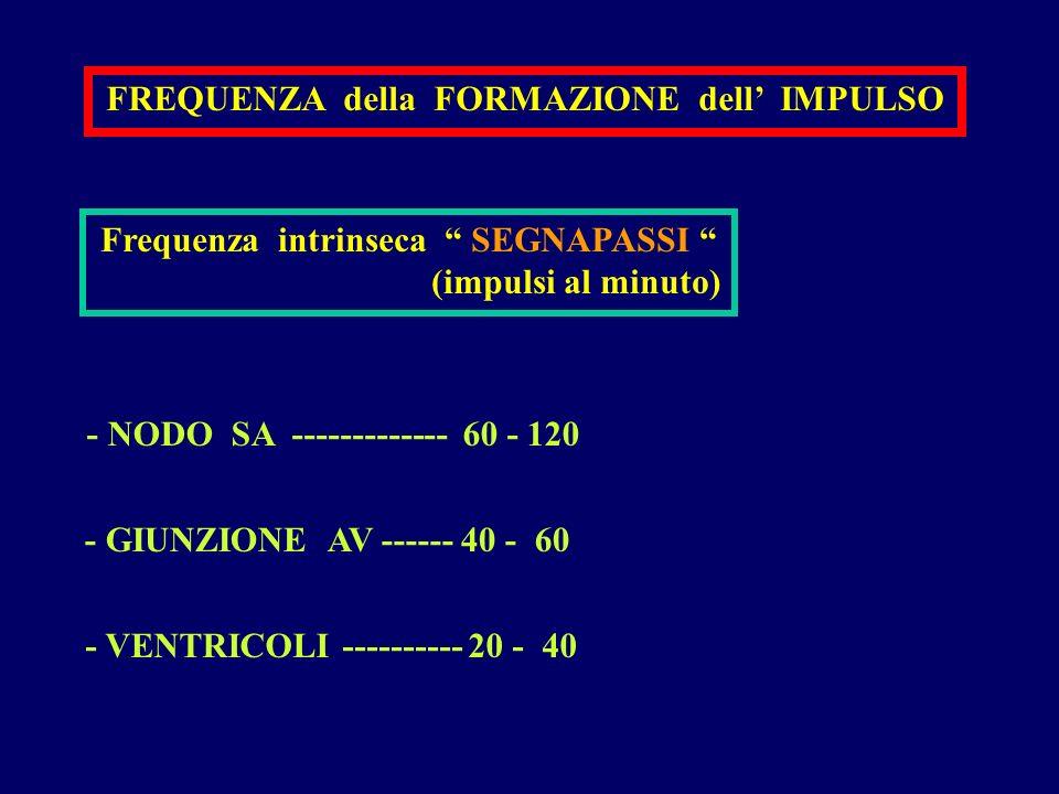 FREQUENZA della FORMAZIONE dell IMPULSO Frequenza intrinseca SEGNAPASSI (impulsi al minuto) - NODO SA ------------- 60 - 120 - VENTRICOLI ---------- 2