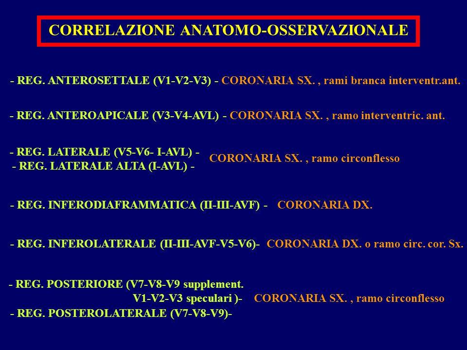 CORRELAZIONE ANATOMO-OSSERVAZIONALE - REG. ANTEROAPICALE (V3-V4-AVL) - CORONARIA SX., ramo interventric. ant. - REG. ANTEROSETTALE (V1-V2-V3) - CORONA