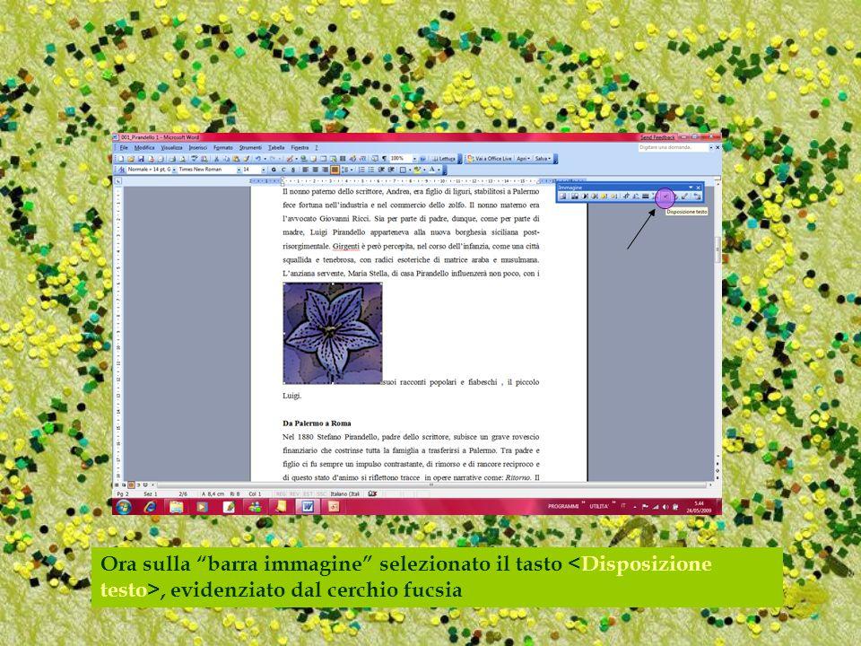Ora sulla barra immagine selezionato il tasto, evidenziato dal cerchio fucsia