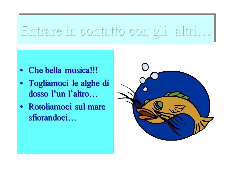 Che bella musica!!!Che bella musica!!.