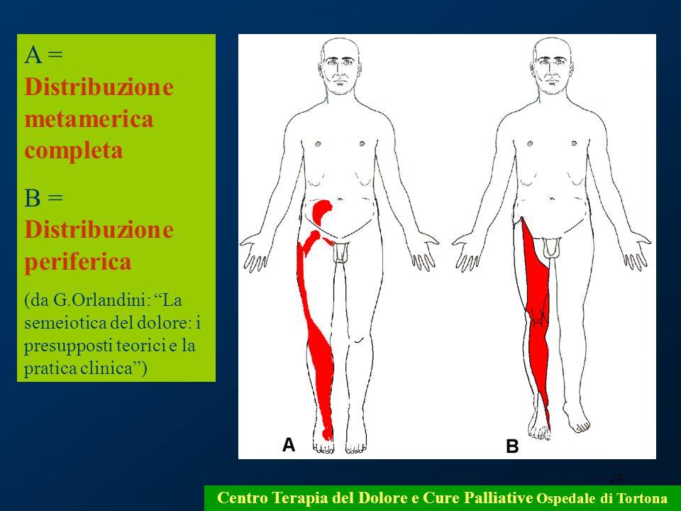 24 Centro Terapia del Dolore e Cure Palliative Ospedale di Tortona A = Distribuzione metamerica completa B = Distribuzione periferica (da G.Orlandini: