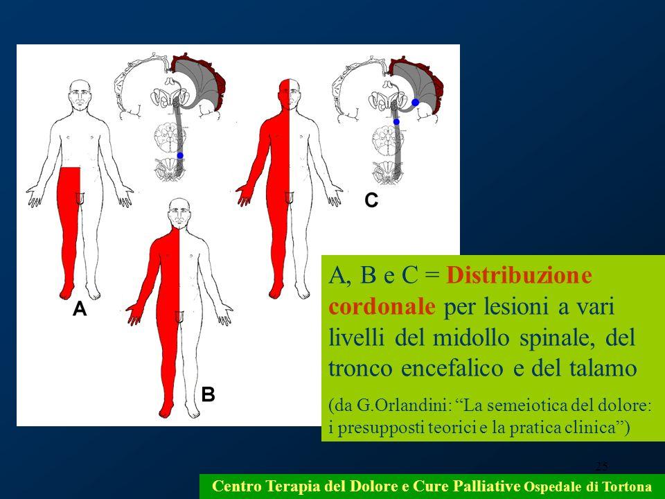 25 Centro Terapia del Dolore e Cure Palliative Ospedale di Tortona A, B e C = Distribuzione cordonale per lesioni a vari livelli del midollo spinale,