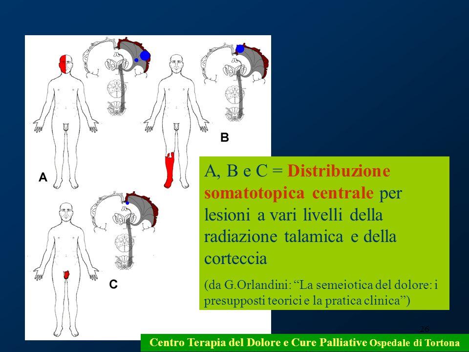 26 Centro Terapia del Dolore e Cure Palliative Ospedale di Tortona A, B e C = Distribuzione somatotopica centrale per lesioni a vari livelli della rad