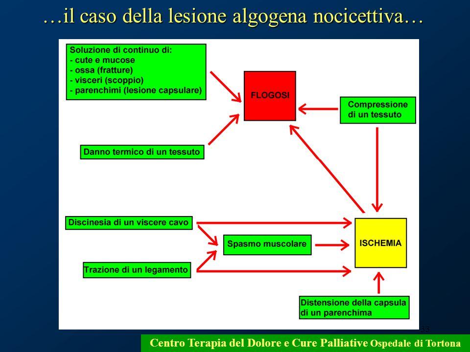 33 Centro Terapia del Dolore e Cure Palliative Ospedale di Tortona …il caso della lesione algogena nocicettiva…