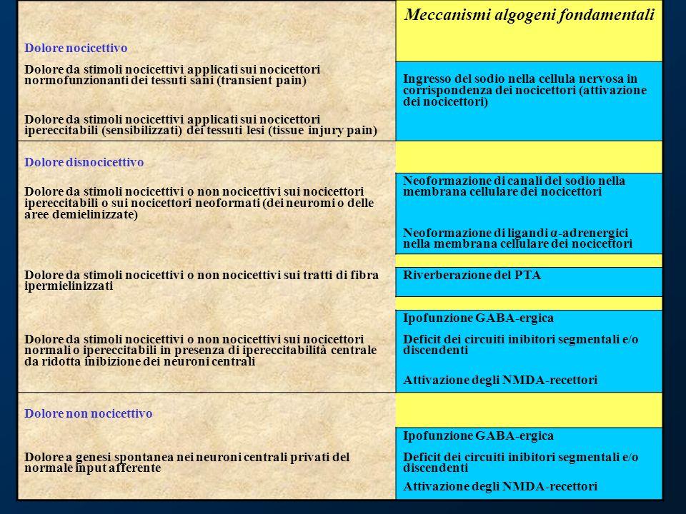 53 Meccanismi algogeni fondamentali Dolore nocicettivo Dolore da stimoli nocicettivi applicati sui nocicettori normofunzionanti dei tessuti sani (tran