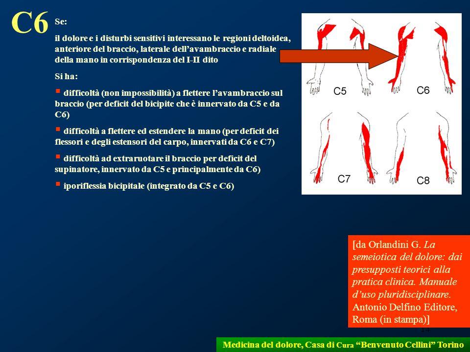 14 Medicina del dolore, Casa di Cura Benvenuto Cellini Torino Se: il dolore e i disturbi sensitivi interessano le regioni deltoidea, anteriore del bra