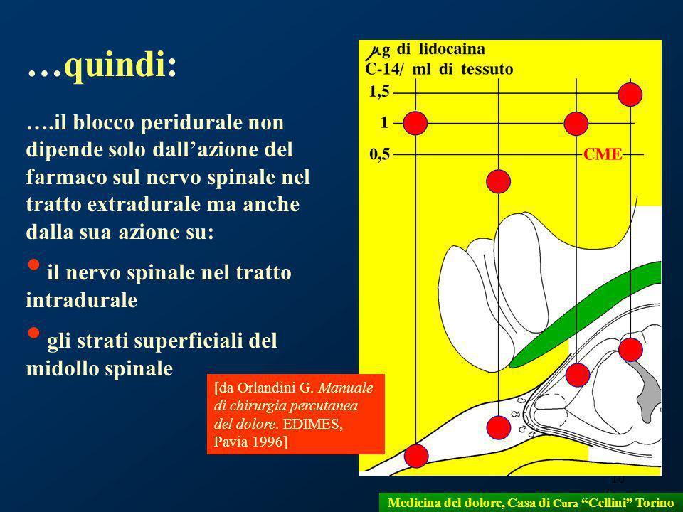 10 …quindi: ….il blocco peridurale non dipende solo dallazione del farmaco sul nervo spinale nel tratto extradurale ma anche dalla sua azione su: il n