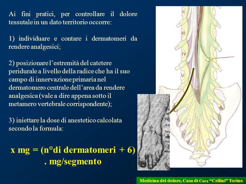26 Ai fini pratici, per controllare il dolore tessutale in un dato territorio occorre: 1) individuare e contare i dermatomeri da rendere analgesici; 2