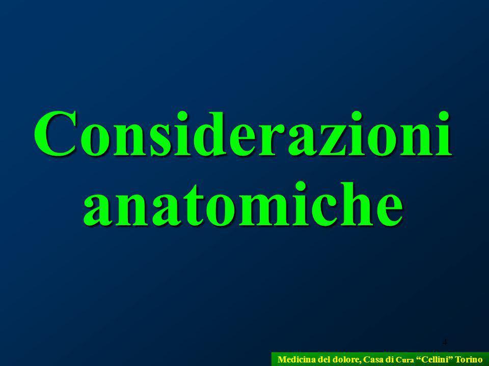 4 Considerazioni anatomiche Medicina del dolore, Casa di Cura Cellini Torino