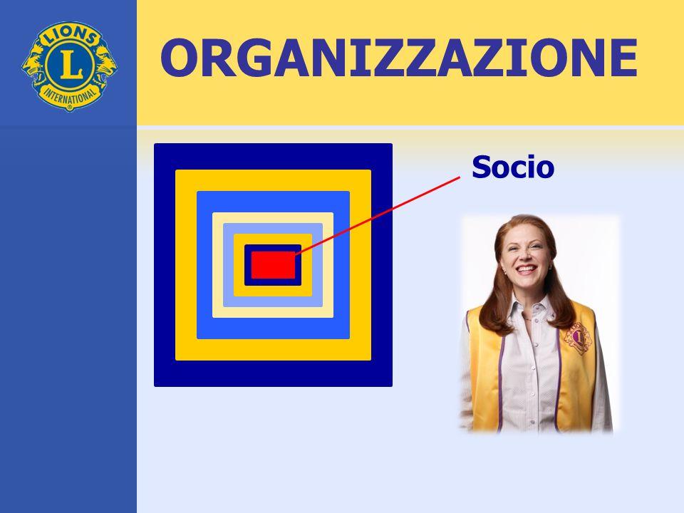 ORGANIZZAZIONE Socio