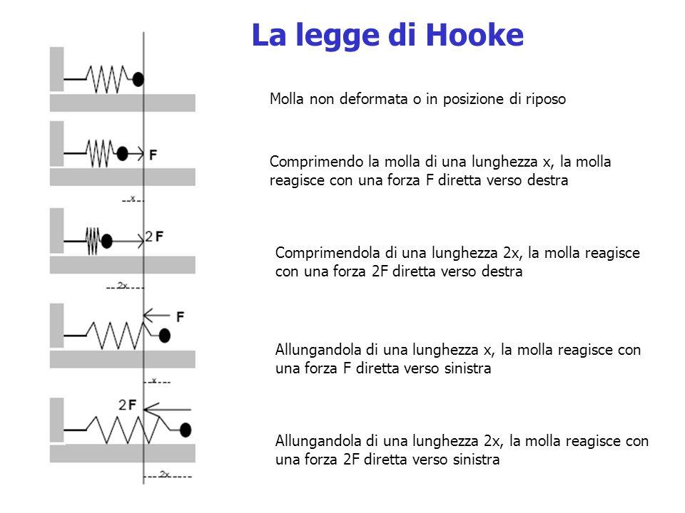 Molla non deformata o in posizione di riposo Comprimendo la molla di una lunghezza x, la molla reagisce con una forza F diretta verso destra Comprimendola di una lunghezza 2x, la molla reagisce con una forza 2F diretta verso destra Allungandola di una lunghezza x, la molla reagisce con una forza F diretta verso sinistra Allungandola di una lunghezza 2x, la molla reagisce con una forza 2F diretta verso sinistra La legge di Hooke