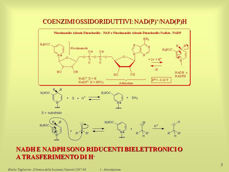 Emilio Tagliavini - Chimica delle Sostanze Naturali 2007/08 1 - Introduzione 3 COENZIMI OSSIDORIDUTTIVI: NAD(P) + /NAD(P)H NADH E NADPH SONO RIDUCENTI