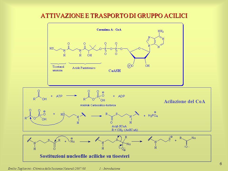 Emilio Tagliavini - Chimica delle Sostanze Naturali 2007/08 1 - Introduzione 6 Acilazione del CoA Sostituzioni nucleofile aciliche su tioesteri ATTIVA