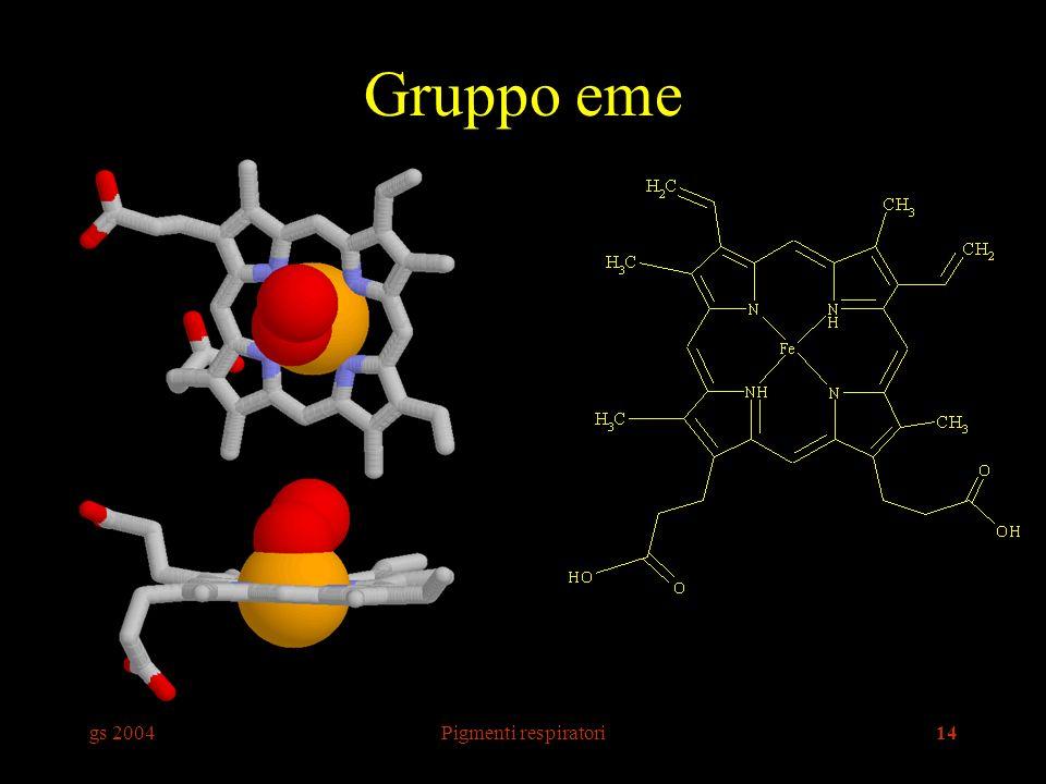 gs 2004Pigmenti respiratori14 Gruppo eme
