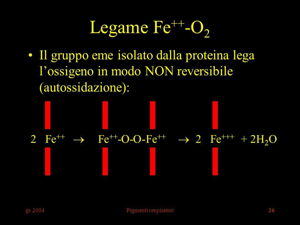 gs 2004Pigmenti respiratori26 Legame Fe ++ -O 2 Il gruppo eme isolato dalla proteina lega lossigeno in modo NON reversibile (autossidazione): 2 Fe ++ Fe ++ -O-O-Fe ++ 2 Fe +++ + 2H 2 O