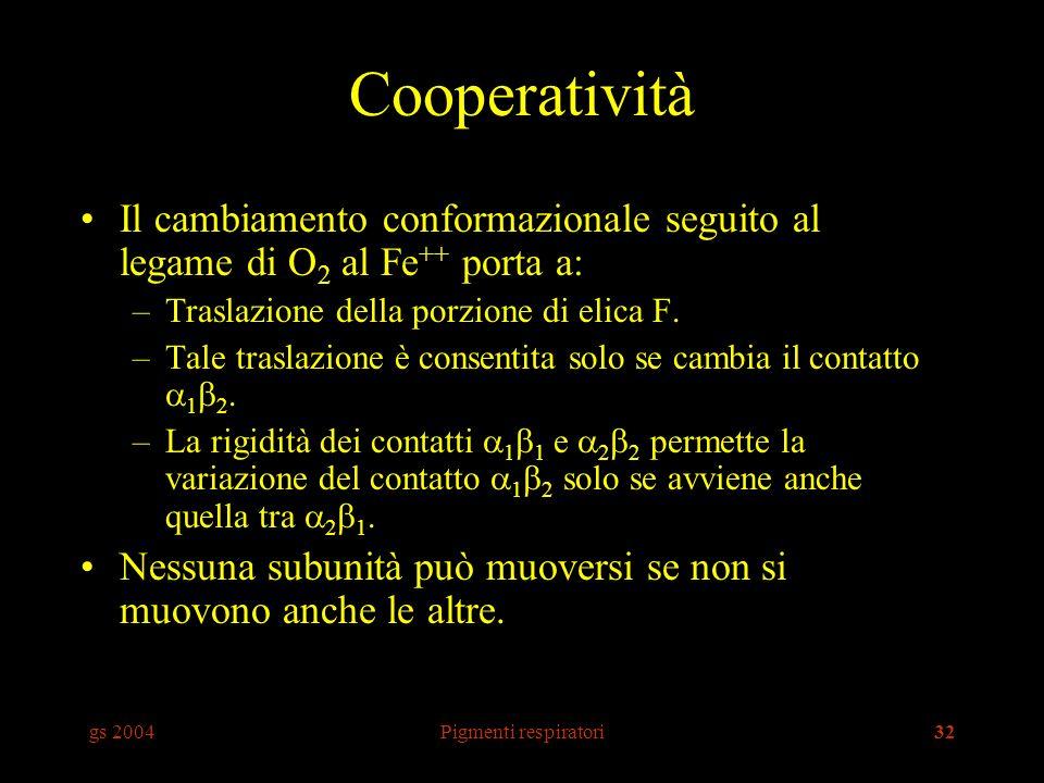 gs 2004Pigmenti respiratori32 Cooperatività Il cambiamento conformazionale seguito al legame di O 2 al Fe ++ porta a: –Traslazione della porzione di elica F.