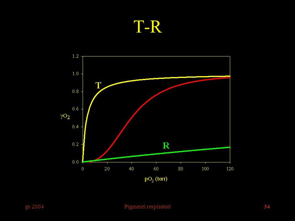gs 2004Pigmenti respiratori34 T-R