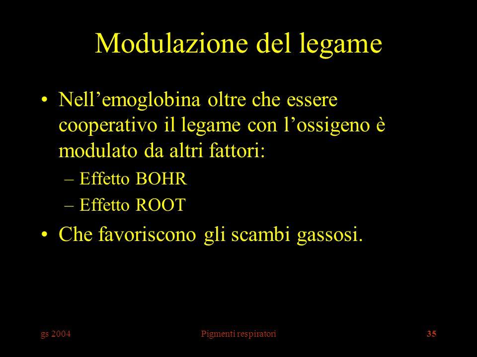 gs 2004Pigmenti respiratori35 Modulazione del legame Nellemoglobina oltre che essere cooperativo il legame con lossigeno è modulato da altri fattori: –Effetto BOHR –Effetto ROOT Che favoriscono gli scambi gassosi.