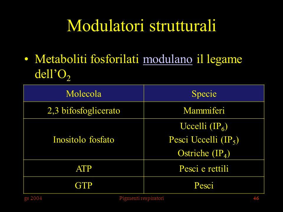 gs 2004Pigmenti respiratori46 Modulatori strutturali Metaboliti fosforilati modulano il legame dellO 2modulano MolecolaSpecie 2,3 bifosfogliceratoMammiferi Inositolo fosfato Uccelli (IP 6 ) Pesci Uccelli (IP 5 ) Ostriche (IP 4 ) ATPPesci e rettili GTPPesci