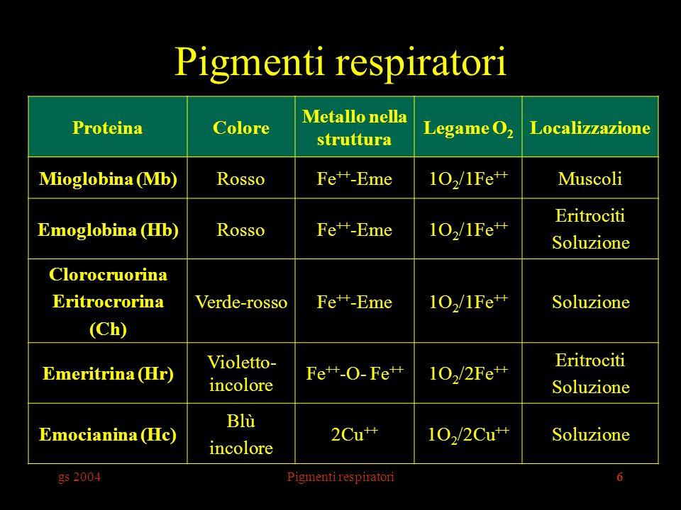 gs 2004Pigmenti respiratori6 ProteinaColore Metallo nella struttura Legame O 2 Localizzazione Mioglobina (Mb)RossoFe ++ -Eme1O 2 /1Fe ++ Muscoli Emoglobina (Hb)RossoFe ++ -Eme1O 2 /1Fe ++ Eritrociti Soluzione Clorocruorina Eritrocrorina (Ch) Verde-rossoFe ++ -Eme1O 2 /1Fe ++ Soluzione Emeritrina (Hr) Violetto- incolore Fe ++ -O- Fe ++ 1O 2 /2Fe ++ Eritrociti Soluzione Emocianina (Hc) Blù incolore 2Cu ++ 1O 2 /2Cu ++ Soluzione