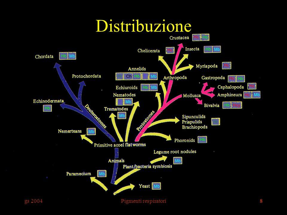 gs 2004Pigmenti respiratori8 Distribuzione