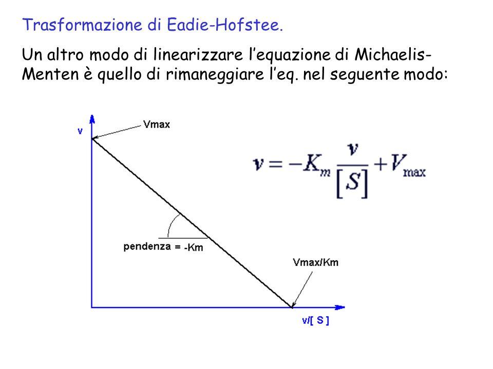 Trasformazione di Eadie-Hofstee. Un altro modo di linearizzare lequazione di Michaelis- Menten è quello di rimaneggiare leq. nel seguente modo: