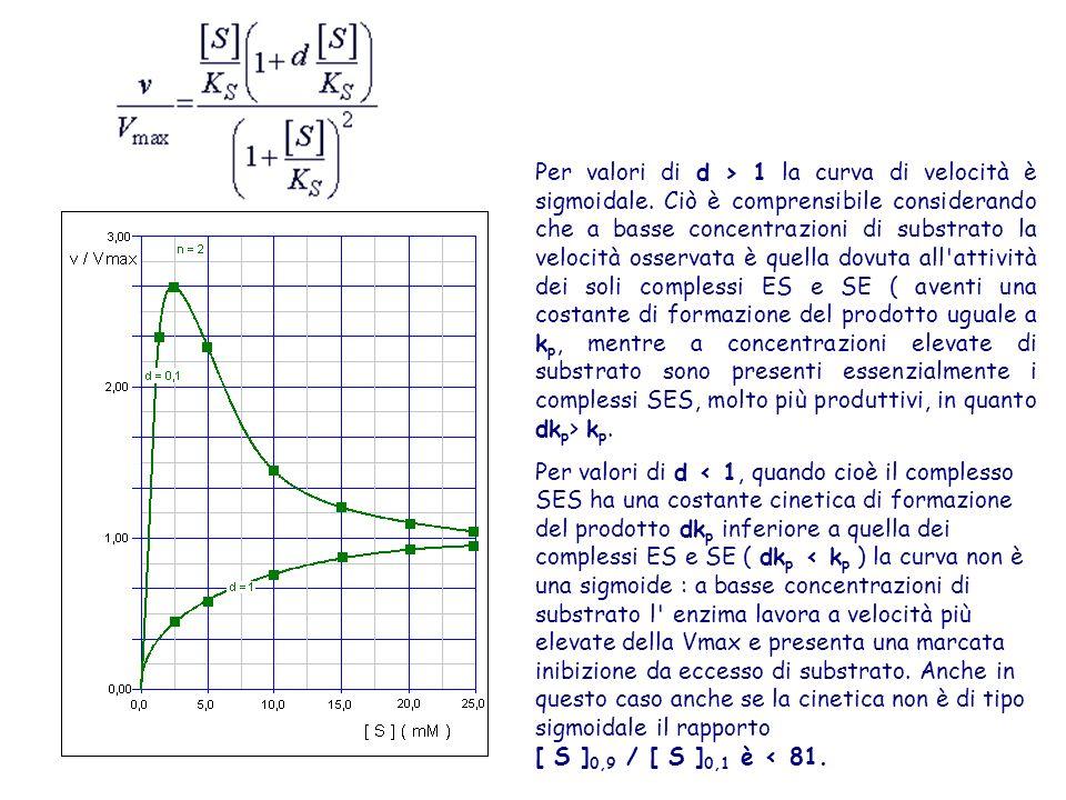 Per valori di d > 1 la curva di velocità è sigmoidale. Ciò è comprensibile considerando che a basse concentrazioni di substrato la velocità osservata