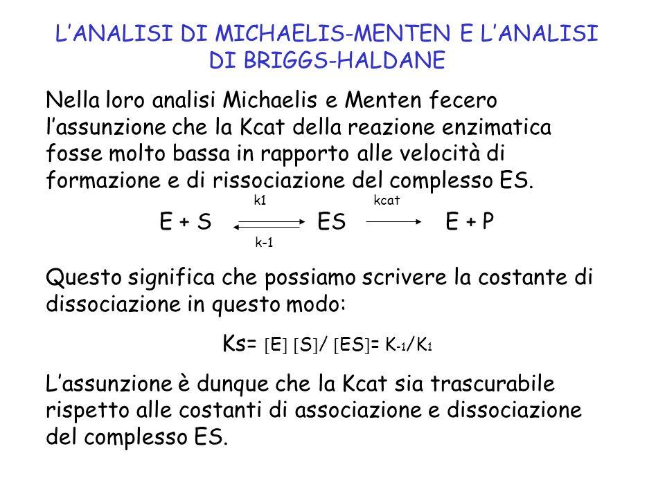Lequazione di Michaelis-Menten che si ottiene descrive matematicamente uniperbole rettangolare: V= K cat E t S / S Ks Quando S>>Ks allora V=Vmax= K cat E t per cui: Vmax S / S +Ks