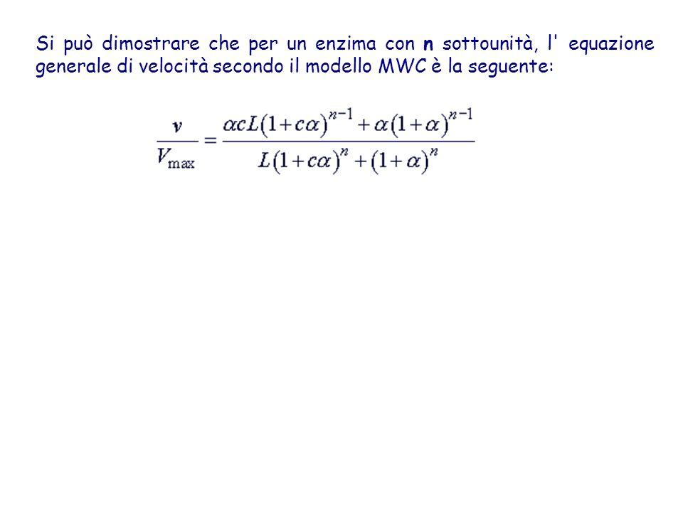 Si può dimostrare che per un enzima con n sottounità, l' equazione generale di velocità secondo il modello MWC è la seguente: