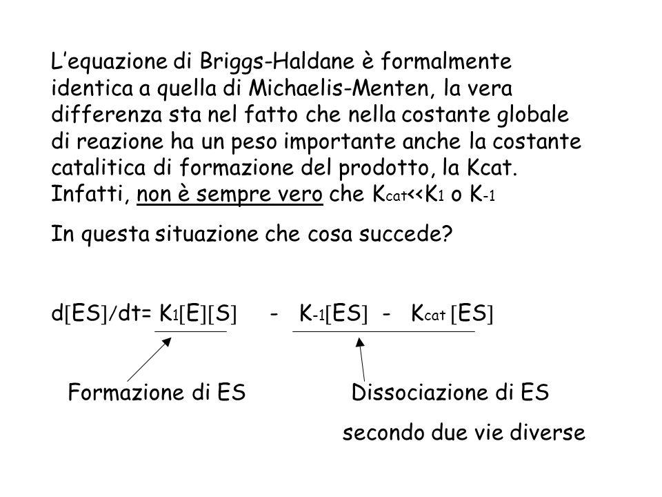 Lequazione di Briggs-Haldane è formalmente identica a quella di Michaelis-Menten, la vera differenza sta nel fatto che nella costante globale di reazi