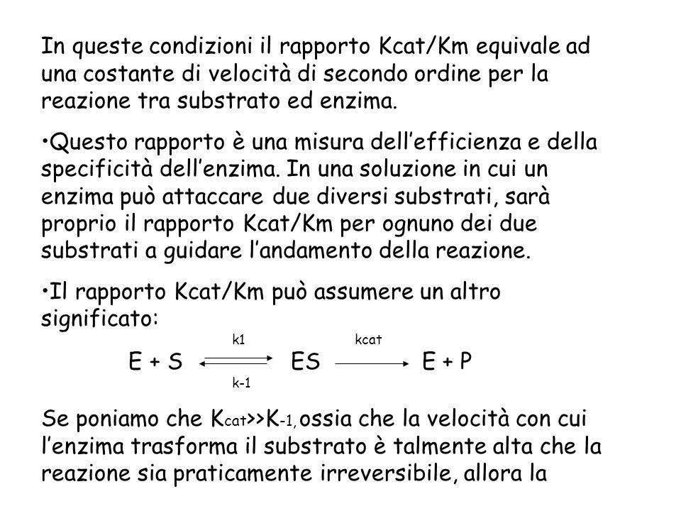 In queste condizioni il rapporto Kcat/Km equivale ad una costante di velocità di secondo ordine per la reazione tra substrato ed enzima. Questo rappor