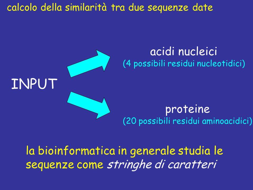 INPUT acidi nucleici (4 possibili residui nucleotidici) proteine (20 possibili residui aminoacidici) la bioinformatica in generale studia le sequenze come stringhe di caratteri calcolo della similarità tra due sequenze date