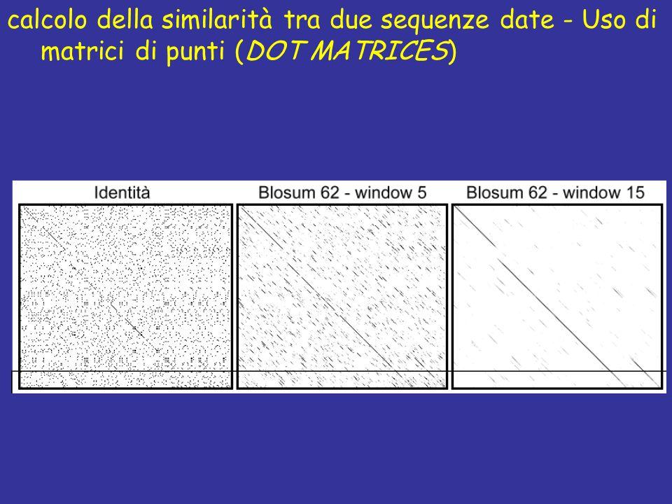 calcolo della similarità tra due sequenze date - Uso di matrici di punti (DOT MATRICES)