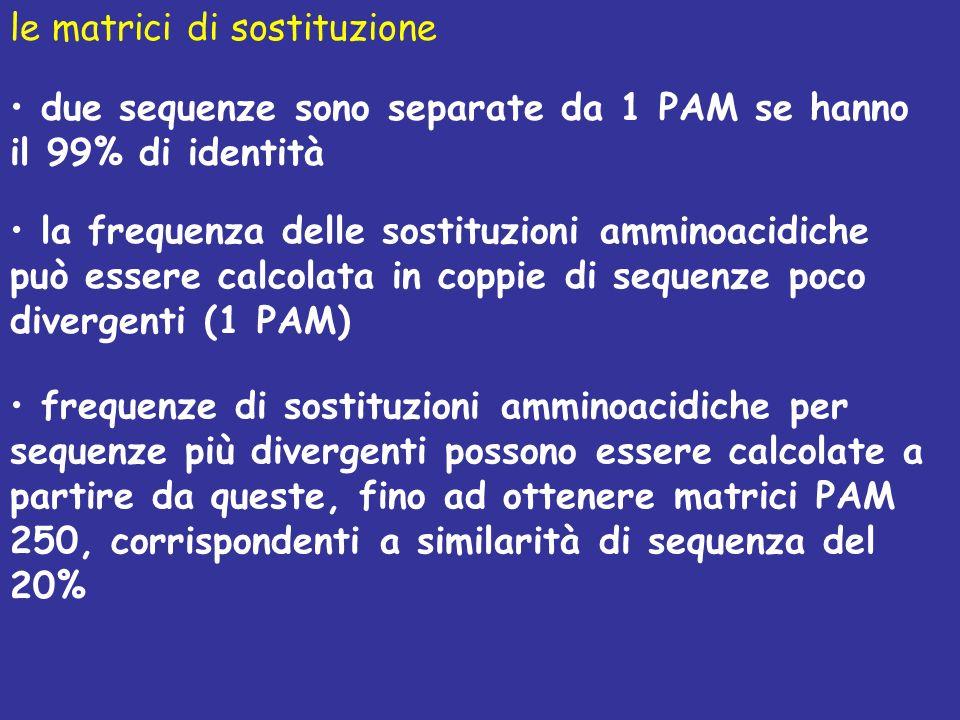 le matrici di sostituzione due sequenze sono separate da 1 PAM se hanno il 99% di identità la frequenza delle sostituzioni amminoacidiche può essere calcolata in coppie di sequenze poco divergenti (1 PAM) frequenze di sostituzioni amminoacidiche per sequenze più divergenti possono essere calcolate a partire da queste, fino ad ottenere matrici PAM 250, corrispondenti a similarità di sequenza del 20%