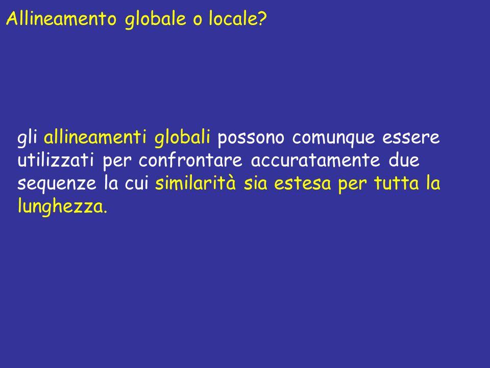 gli allineamenti globali possono comunque essere utilizzati per confrontare accuratamente due sequenze la cui similarità sia estesa per tutta la lunghezza.