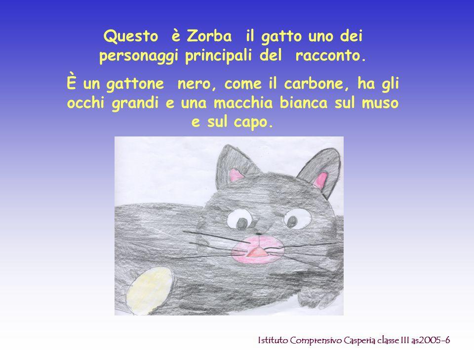 Questo è Zorba il gatto uno dei personaggi principali del racconto. È un gattone nero, come il carbone, ha gli occhi grandi e una macchia bianca sul m