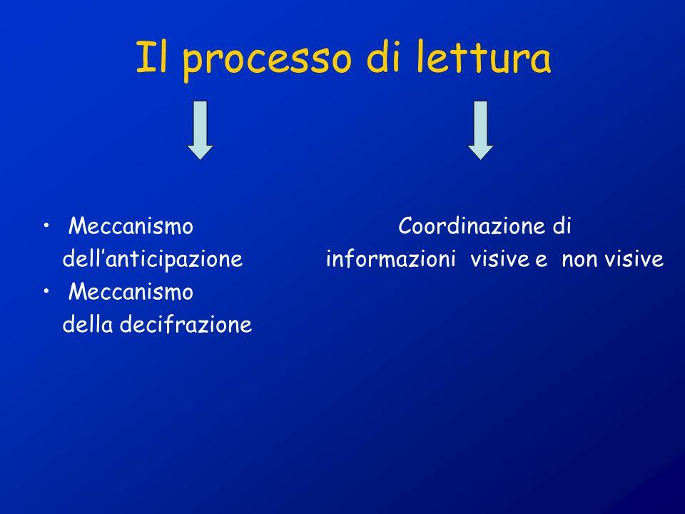 Il processo di lettura Meccanismo Coordinazione di dellanticipazione informazioni visive e non visive Meccanismo della decifrazione
