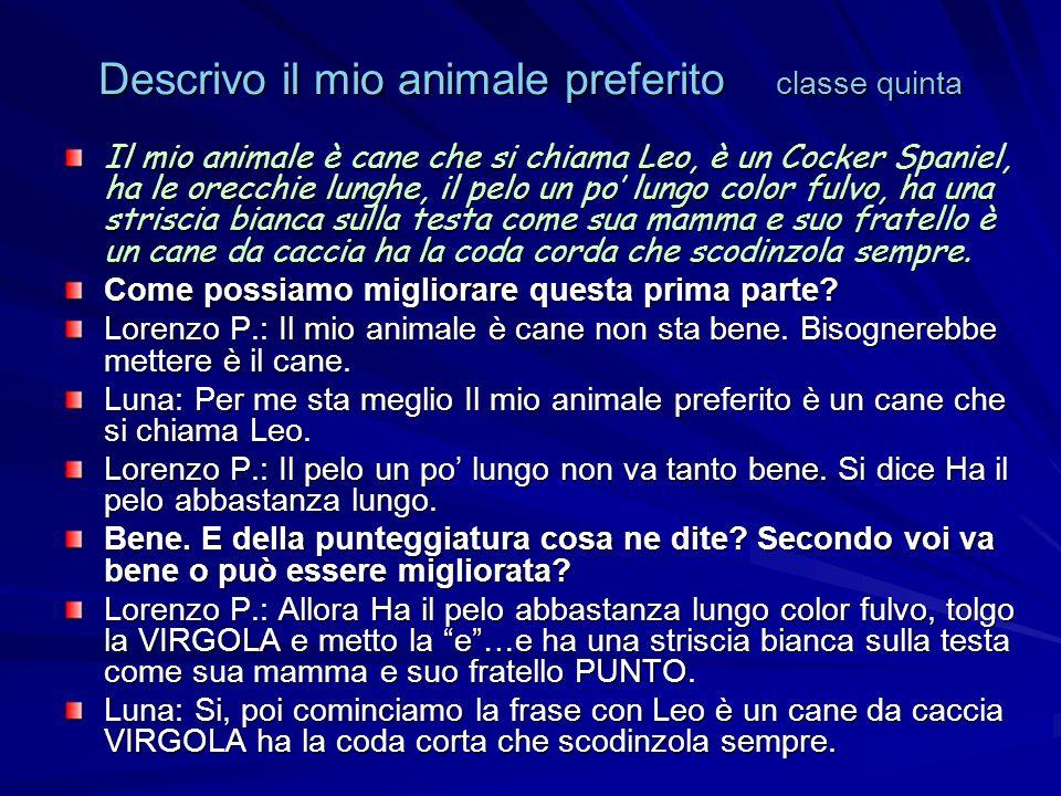 Descrivo il mio animale preferito classe quinta Il mio animale è cane che si chiama Leo, è un Cocker Spaniel, ha le orecchie lunghe, il pelo un po lungo color fulvo, ha una striscia bianca sulla testa come sua mamma e suo fratello è un cane da caccia ha la coda corda che scodinzola sempre.
