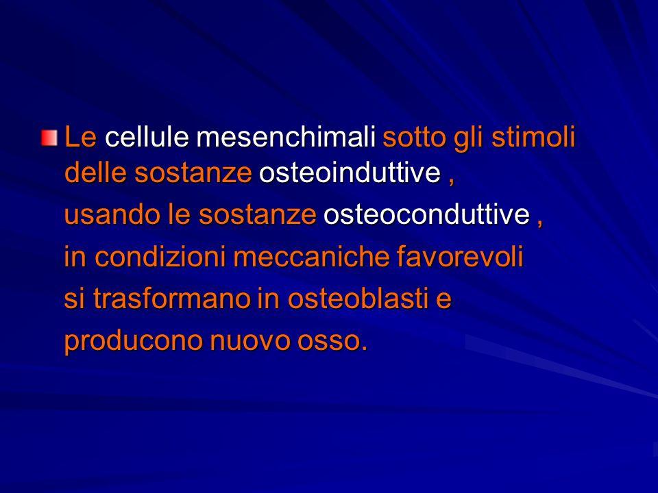 Le cellule mesenchimali sotto gli stimoli delle sostanze osteoinduttive, usando le sostanze osteoconduttive, usando le sostanze osteoconduttive, in co