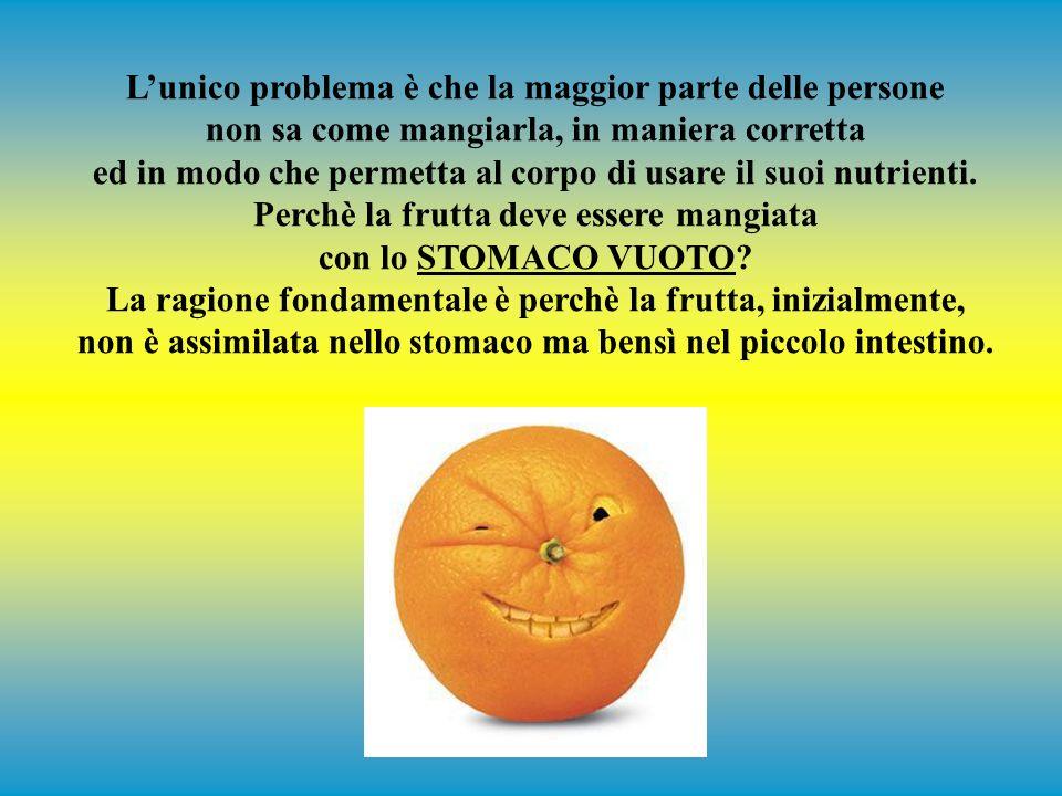 Lunico alimento che fa lavorare il tuo cervello è il glucosio. La frutta è composta principalmente da fruttosio (che può essere trasformato facilmente