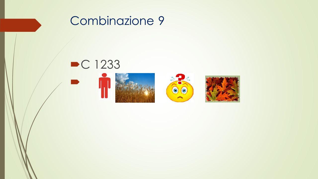 Combinazione 9 C 1233