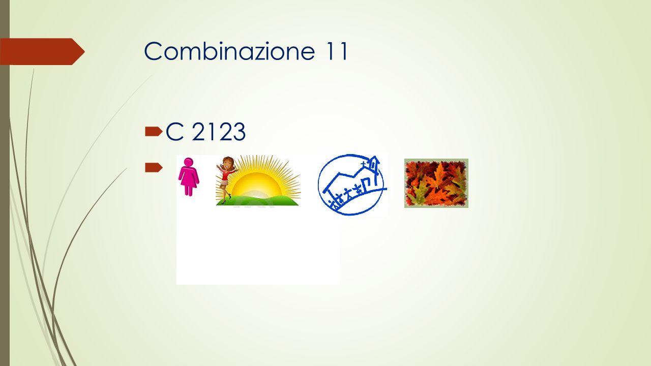 Combinazione 11 C 2123