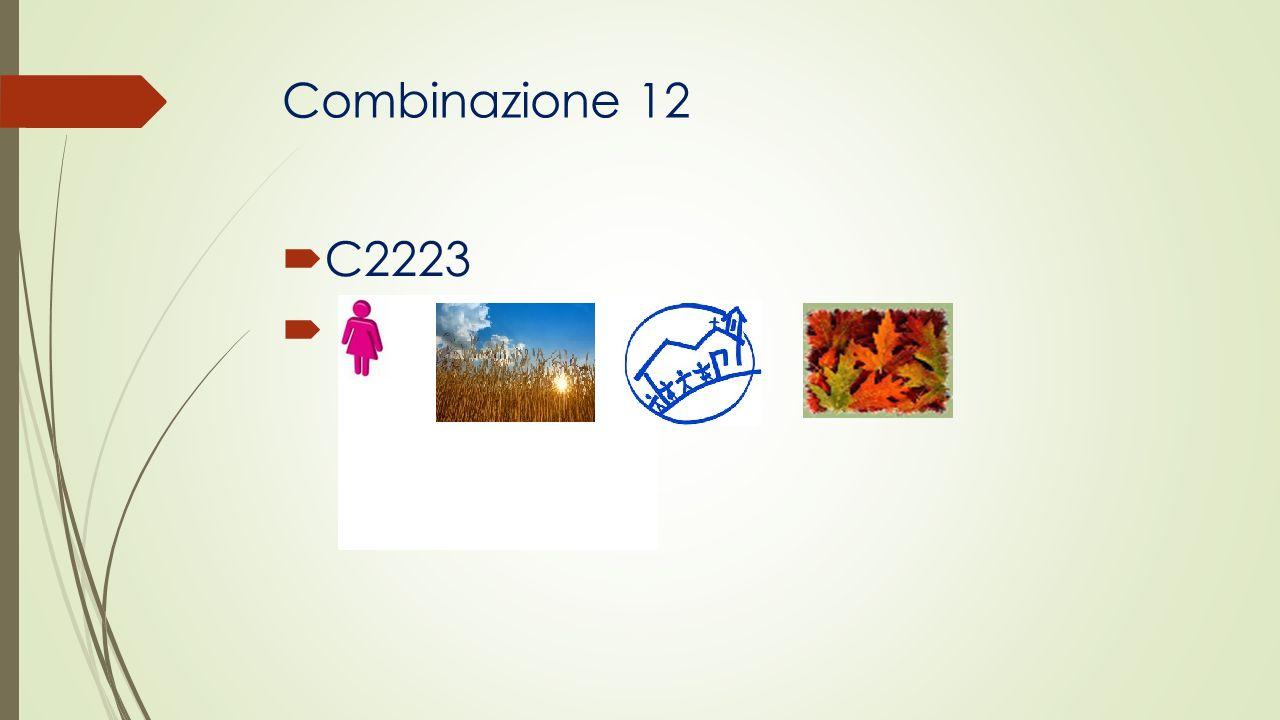 Combinazione 12 C2223