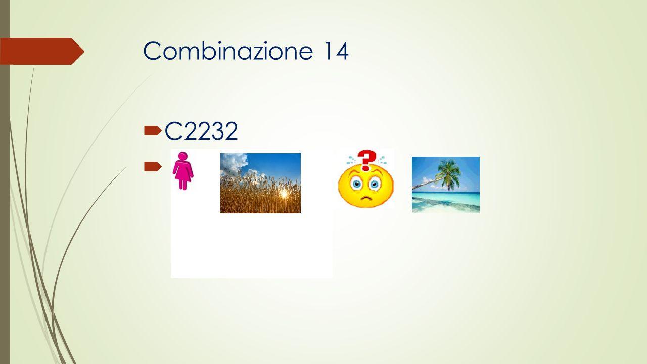 Combinazione 14 C2232