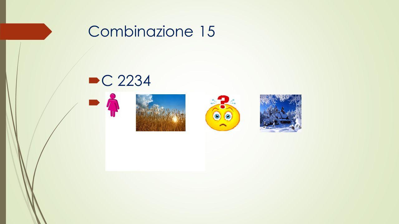 Combinazione 15 C 2234