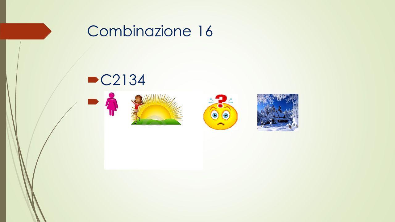 Combinazione 16 C2134